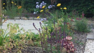 Designing a school sensory garden – a classroom outside