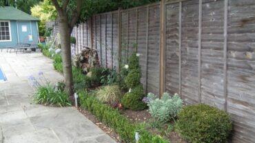 Topiary planting scheme